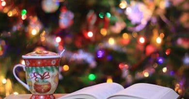 Er bøger en god julegave?